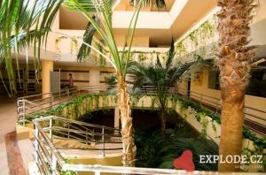 Zeleň v hotelu