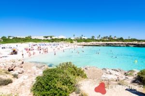 Pláž u hotelu Smartline Calan Bosch