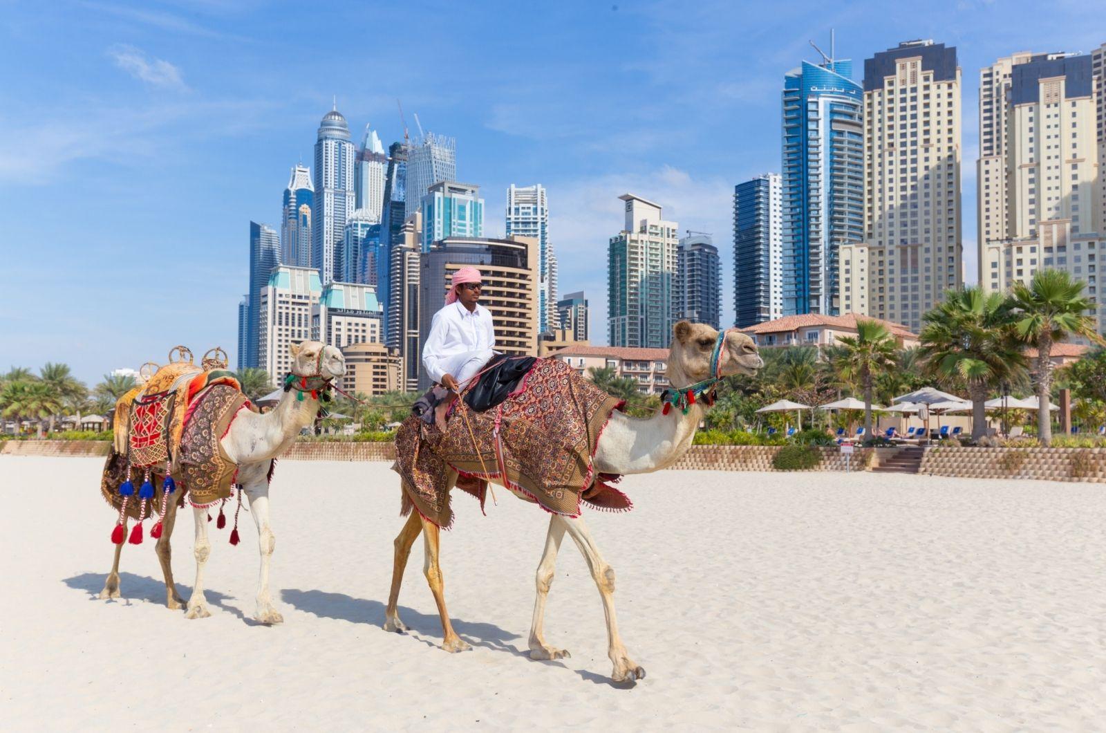 Aktivity ve Spojených arabských emirátech