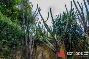 Botanická zahrada - Caminho do Meio