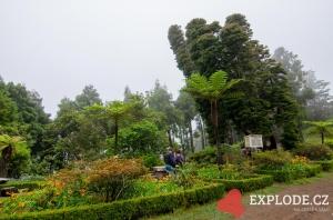 Posto Florestal Lamaceiros