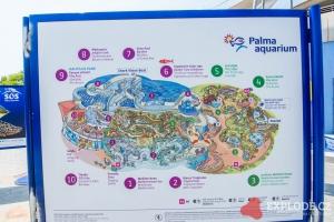 Aquarium Palma